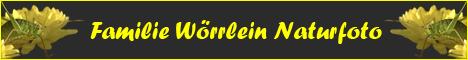 woerrlein_banner