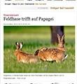 Artikel in Stuttgarter Zeitung