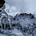 Eisformen durch Spritzwasser