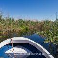 Exkursion durch das Donaudelta