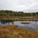 Hällefors-Knutsjödmossen