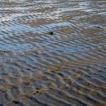 Ebbe im Wattenmeer