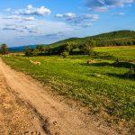 Umgebung von Texa, Bulgarien