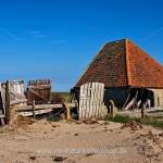 Schafstall, Insel Texel, Niederlande