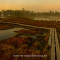 Hochmoor in Schweden bei Tagesanbruch