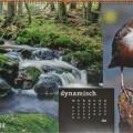 Kalender Bundesamt fuer Naturschutz, Wasseramsel 40x70cm