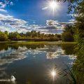 Naturschutzgebiet Neckarwasen bei Wendlingen