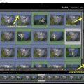 Im Video wird gezeigt wie ich Bilder mit einer laufenden Nummer versehe und Stichworte eintrage