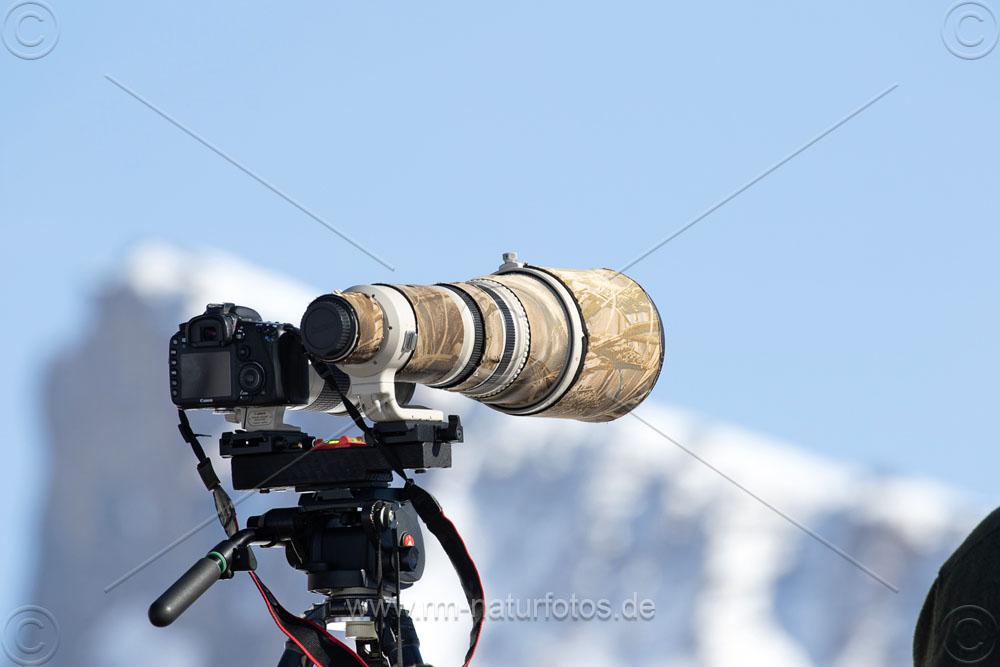 Objektivhalter für zwei Objektive auf einem Stativ. Einsatz bei den Bartgeiern im Wallis