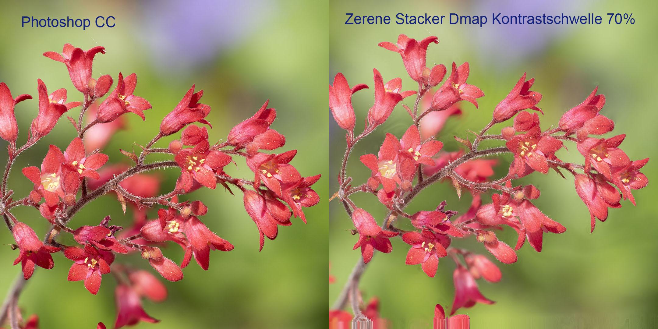 Vergleich Photoshop-Zerene Stacker Modus Dmap Kontrastschwelle 70%