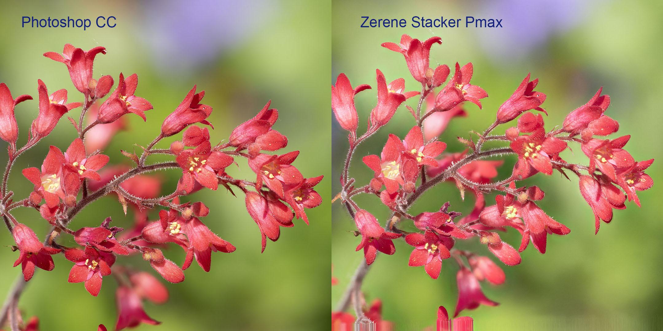 Vergleich Photoshop-Zerene Stacker Modus Pmax