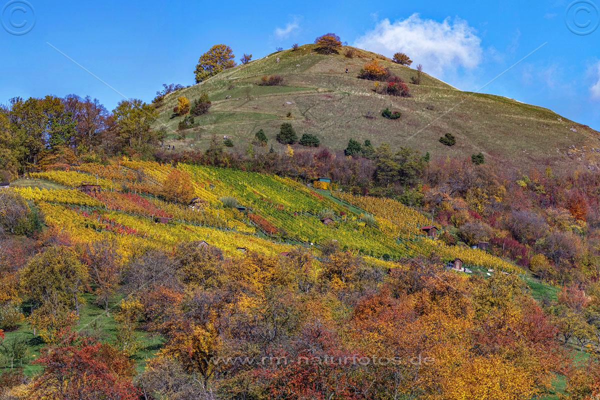 Herbststimmung an der Limburg,Limburg, Albvorland, Weilheim, Baden-Württemberg
