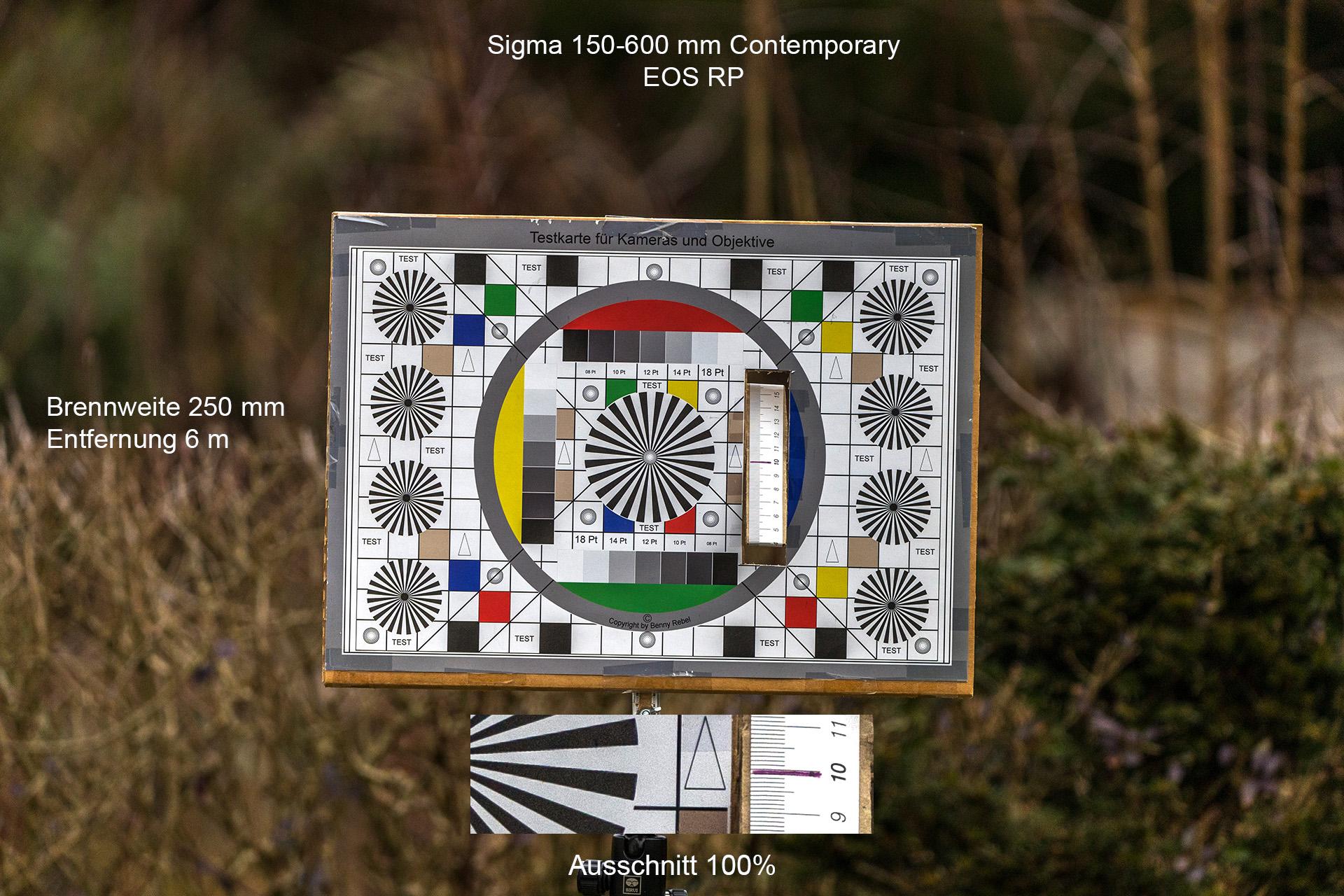 Testaufnahmen mit Sigma 150-600 mm, Canon EOS RP, 250 mm, 6 Meter