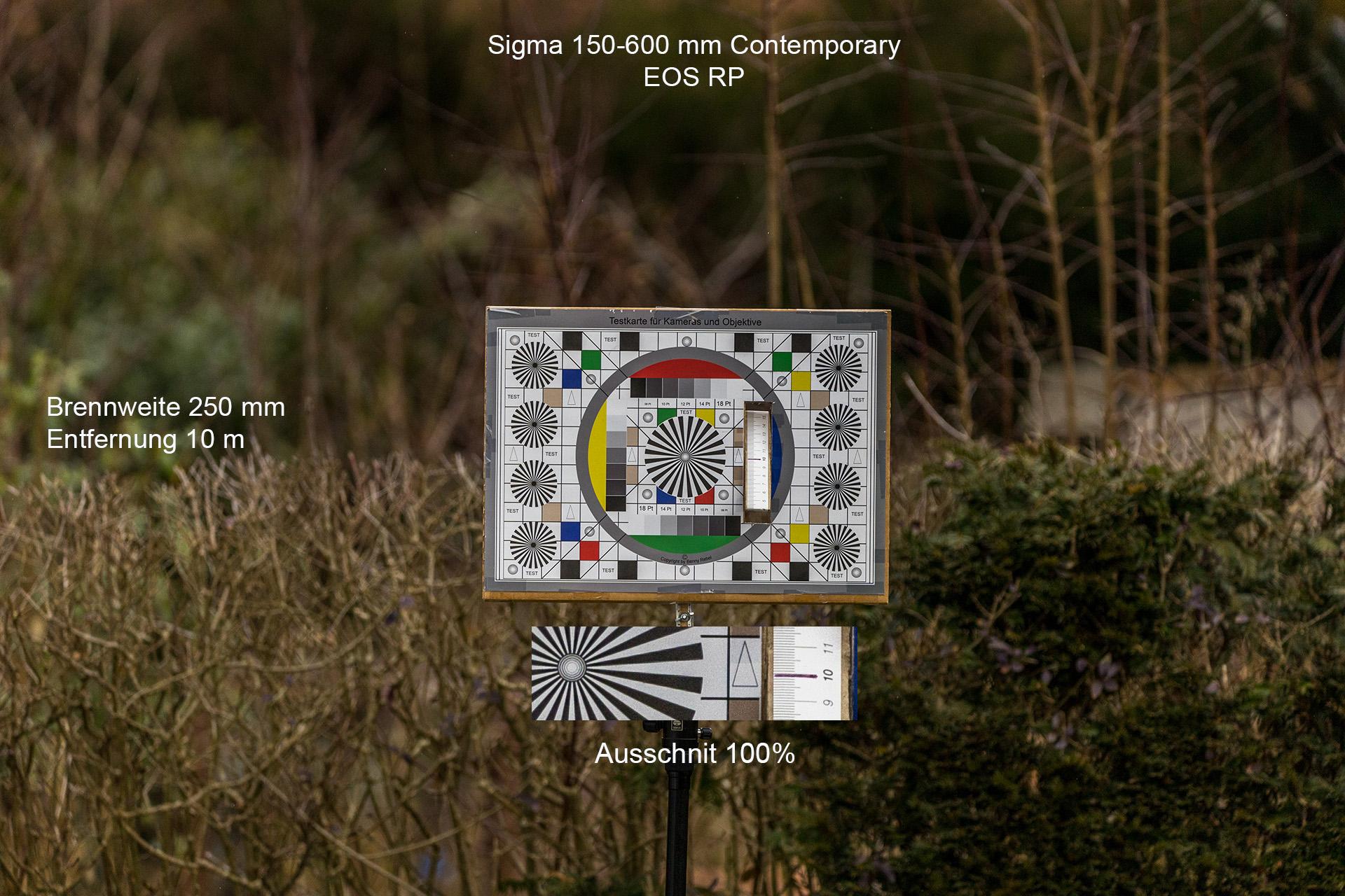 Testaufnahmen mit Sigma 150-600 mm, Canon EOS RP, 250 mm, 10 Meter