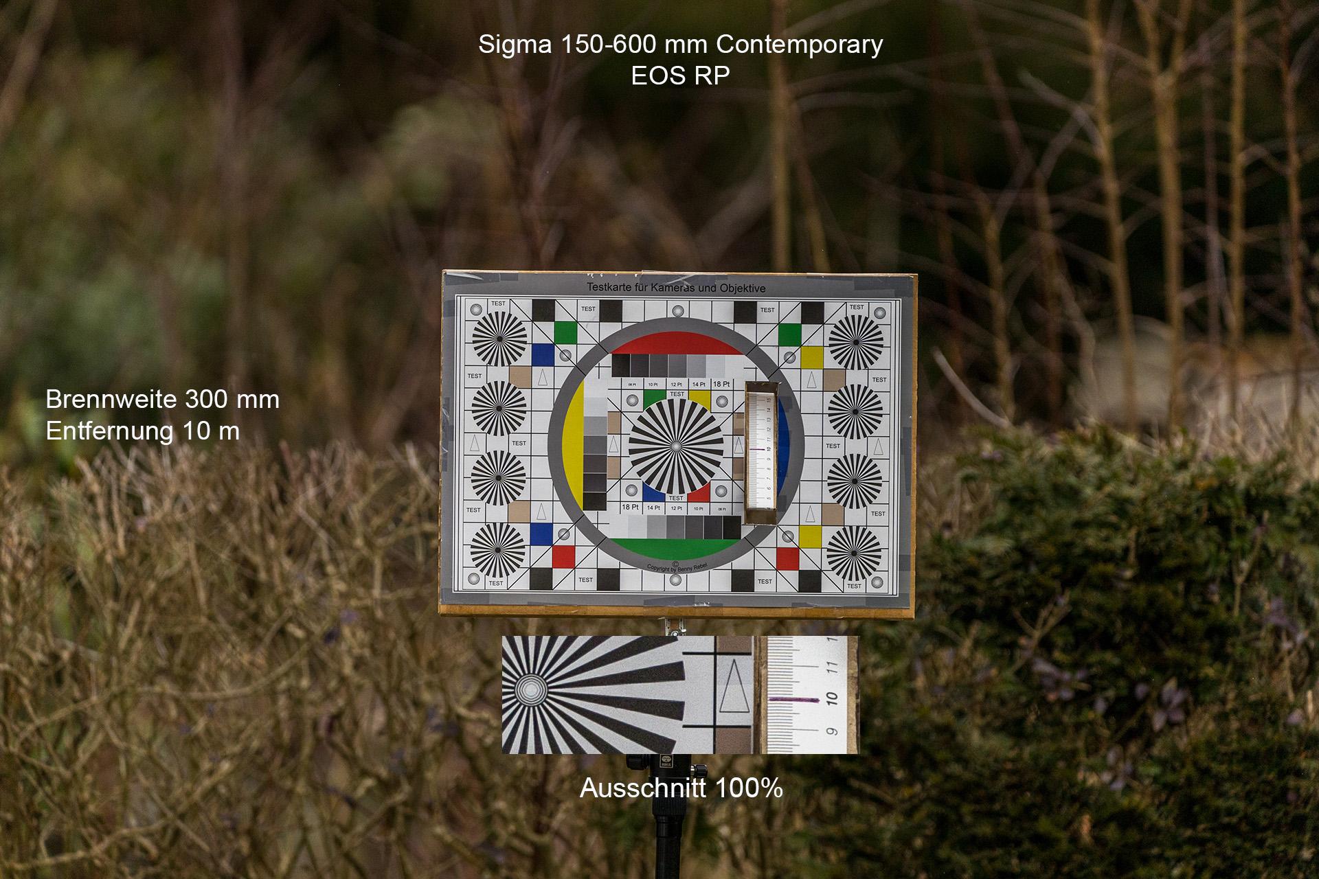 Testaufnahmen mit Sigma 150-600 mm, Canon EOS RP, 300 mm, 10 Meter