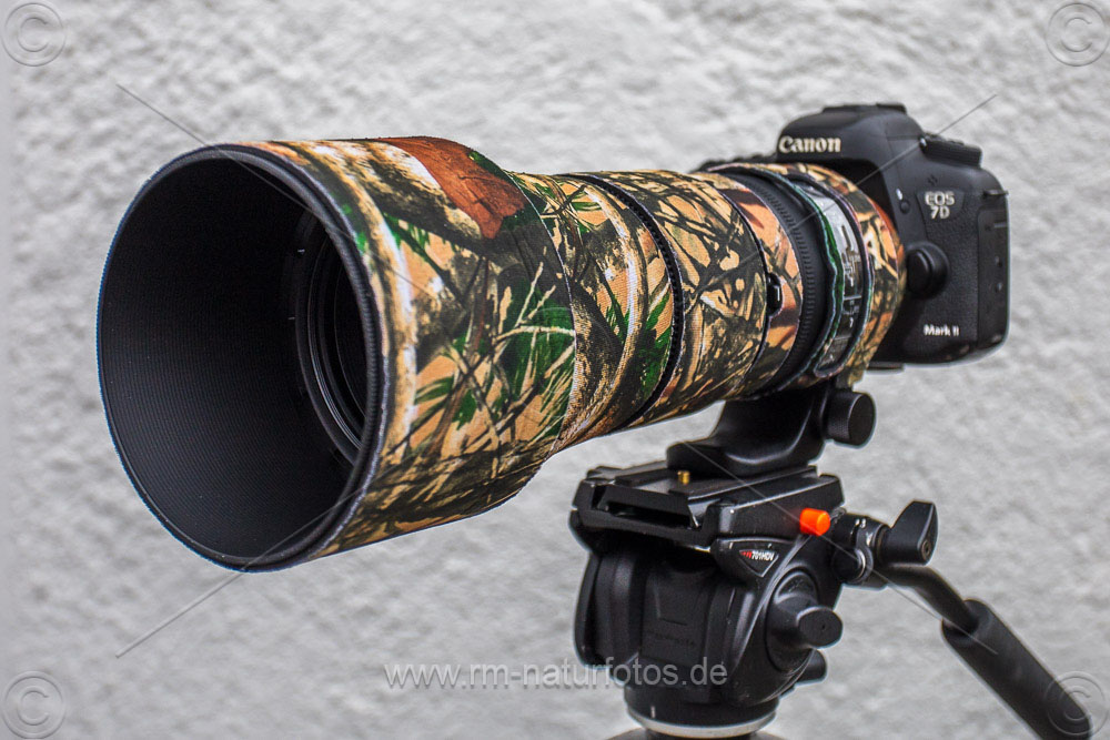 Sigma 150-600 mm, EOS 7D Mark II