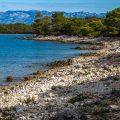 Am Strand Punta Scala, Zaton, Kroatien